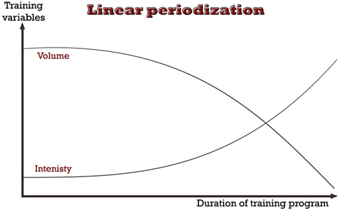 Muscle and strength programming Linear periodization