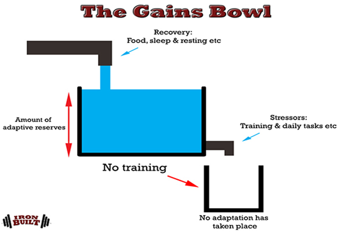 muscle and strength programming gains bowl