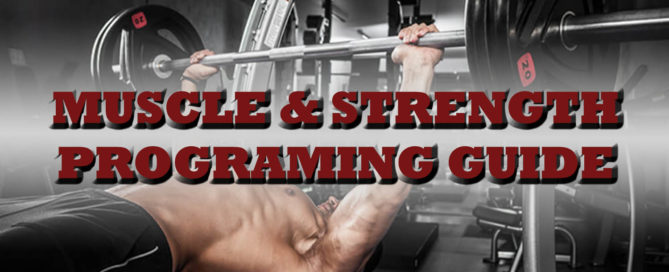 muscle-strength-programming-guide