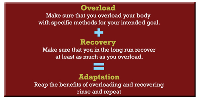 muscle and strength programming overload, recovery, adaptation