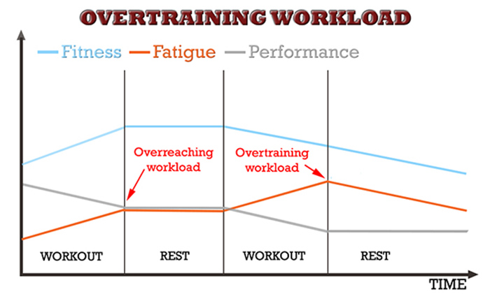 muscle and strength programming overtraining fitness fatigue model