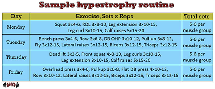 muscle and strength programming hypertrophy routine