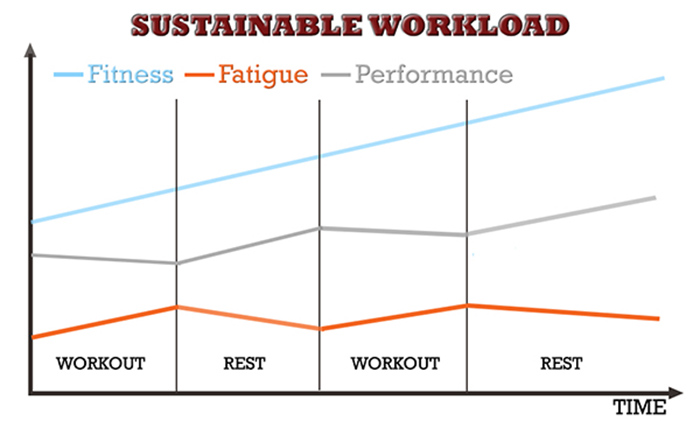 muscle and strength programming fitness fatigue model