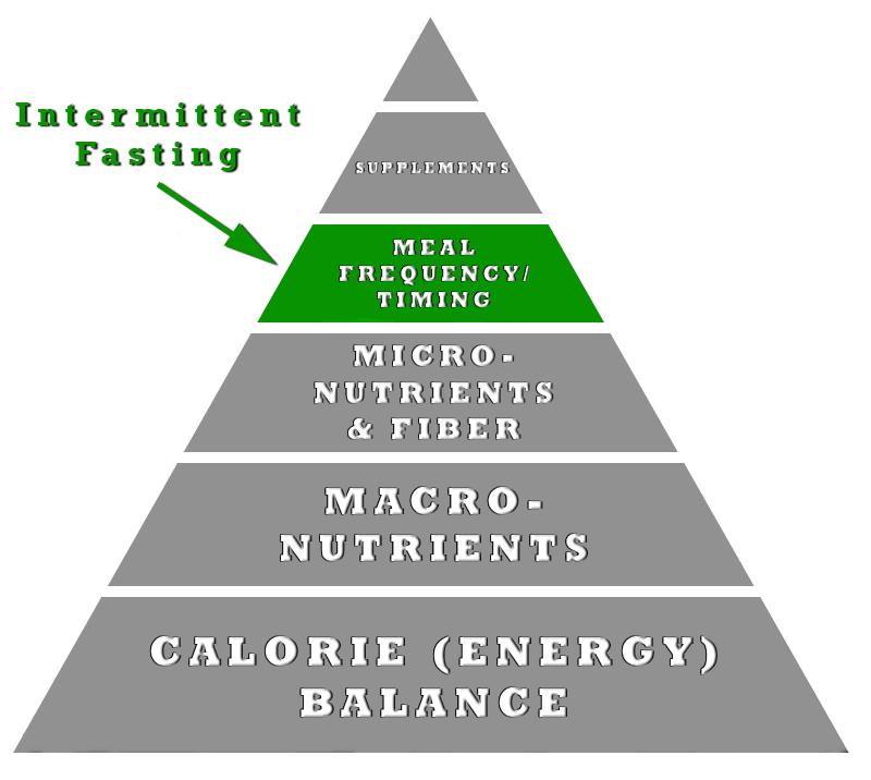 Foods burn fat build muscle