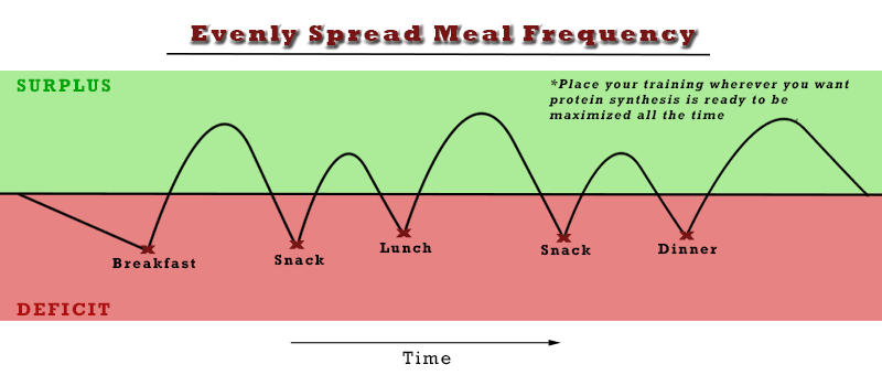 Evenly spread meal frequency