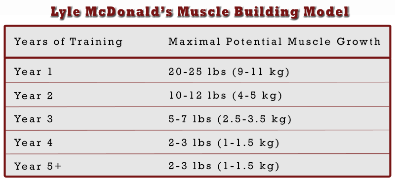 How to build muscle chart