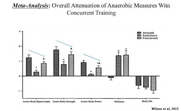 Meta-analysis-concurrent-training