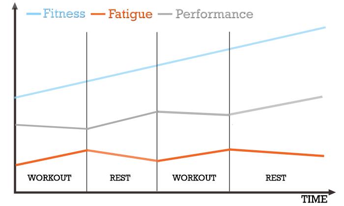 fitness fatigue model