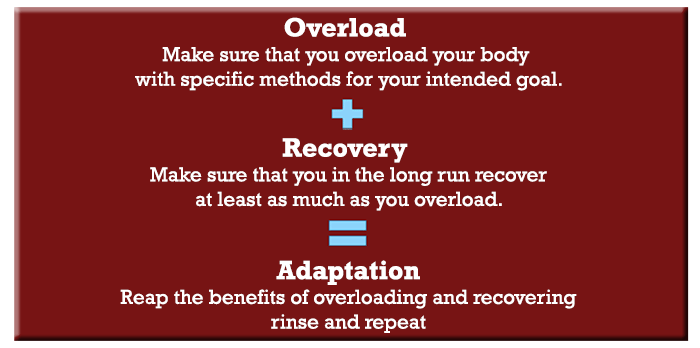 overload, recovery, adaptation
