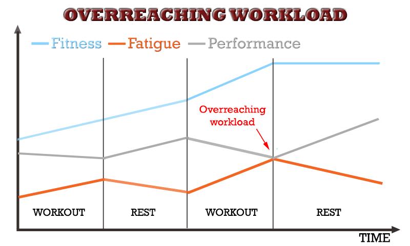 overreaching fitness fatigue model