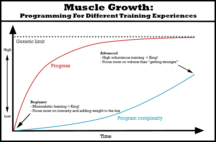 muscle-growth-training-experience-programming