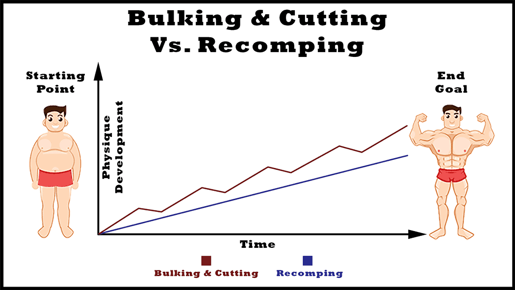 bulking-and-cutting-cycles-vs-body-recomposition