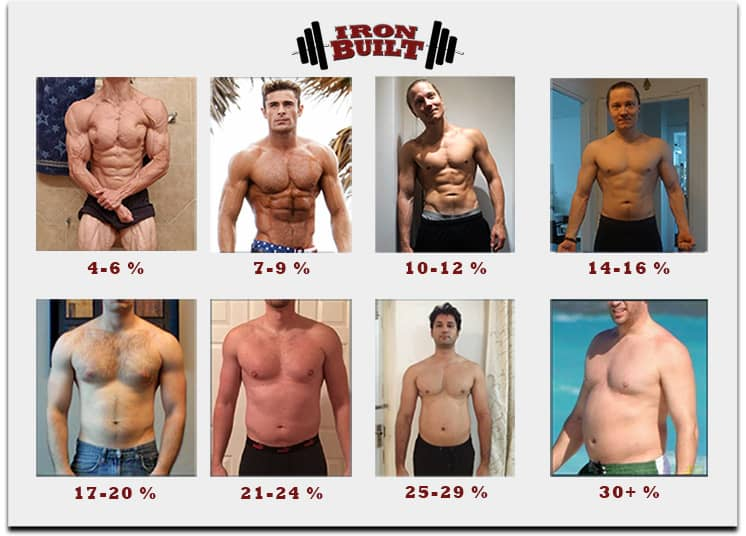 what is a body fat percentage