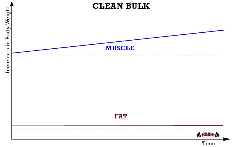 CLEAN-BULK-STRATEGY